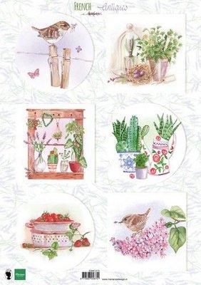 Marianne D Knipvellen Franse antiek kruiden EWK1273 A4 (03-20)
