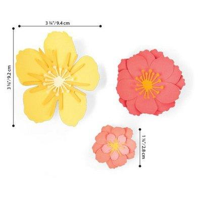 Sizzix Thinlits Die Set - 7PK Floral Blossom 664443 Jen Long