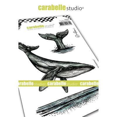 SA60494 Carabelle Studio • Cling stamp A6 le chant des baleines
