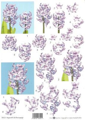 3D knipvel Daffodils DD25 Hyacinth