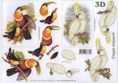 3D knipvel Le Suh 4169.197 Vogels A4