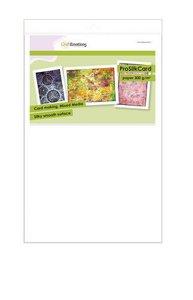 CraftEmotions ProSilkCard - luxe glad karton wit 10 vl 32 x 46cm - 300 gr