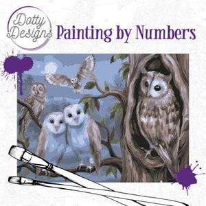 DDP1011 Dotty Design Painting by Numbers - Amazing Owls