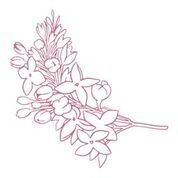 CO727401 Couture Creations Lilacs Mini Stamp 50x50mm