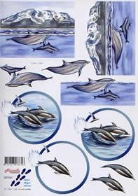 3D knipvel Le Suh 8215.041 Dolfijnen A4
