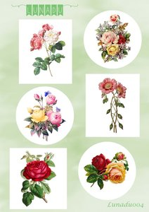 LD1004 - Knipvel - Lunadu - Vintage Flowers