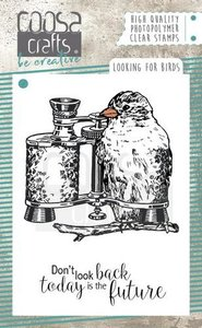 COOSA Crafts clearstamps A7 - Looking for Birds COC-051